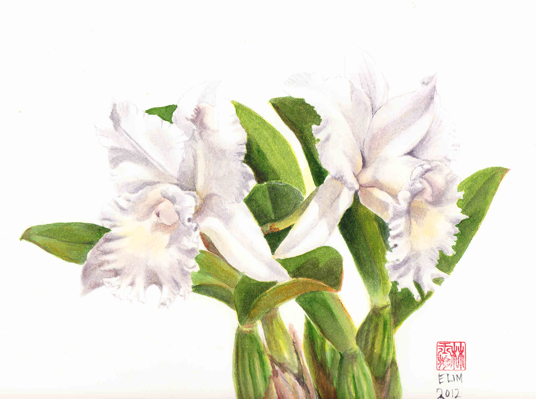 The Botanical Palette Painting White Flowers Painting Kuching In